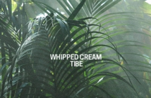 Download Fareye by Whipped Cream and Tibe